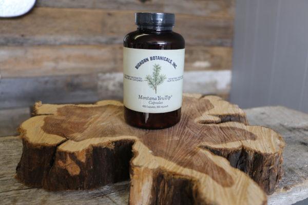 Bighorn Botanicals inc Montana yew tip capsules with CBD